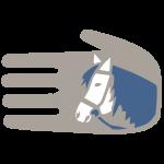 pro_ira_hfp-patenschaft-fuer-pferde-800x800-kopie