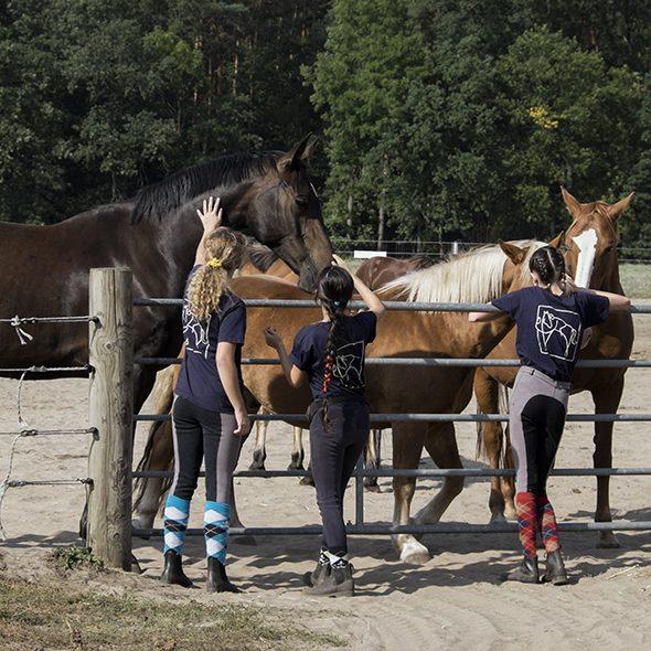 Pro IRA e.V. Inklusives Reiten Berlin Menschen Pferde Zusammenkommen